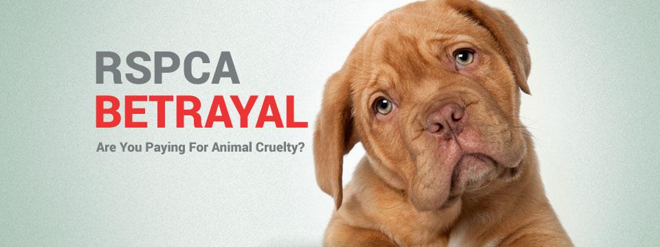 RSPCA Betrayal
